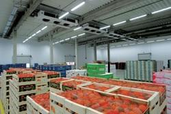 В 2015 году в России заработают первые центры приема фермерской продукции