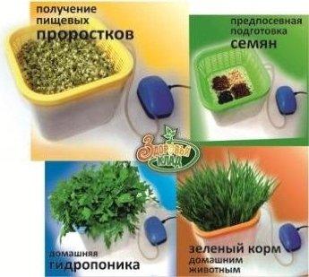 Сбор заказов. Уникальные устройства для простого домашнего выращивания зеленого лука, травы, цветов, проращивания зерна и семян! Цены от производителя!