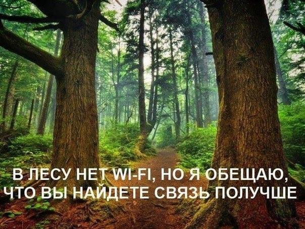 Природа -подарок от Бога.