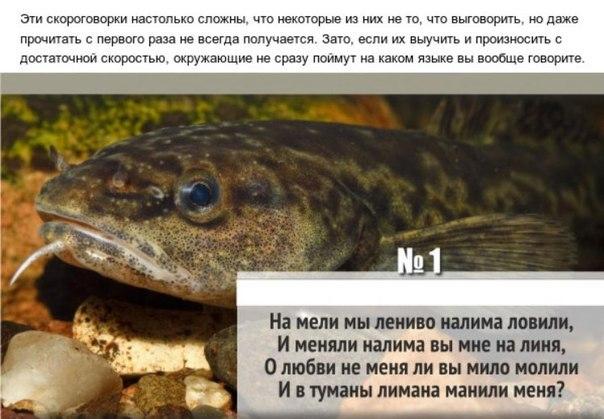 17 самых сложных скороговорок на русском языке