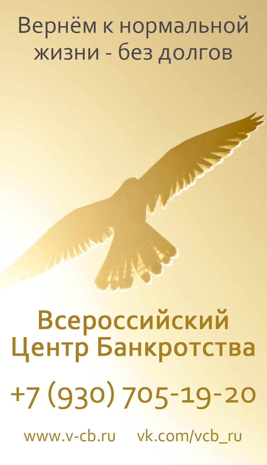Банкротство физических и юридических лиц, списание долгов