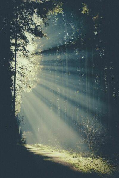 Бог не говорит ни на одном из наших языков. Он говорит светом, тишиной, высотой и глубиной, обнимающими нас.(с)