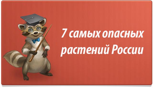 7 опасных растений России