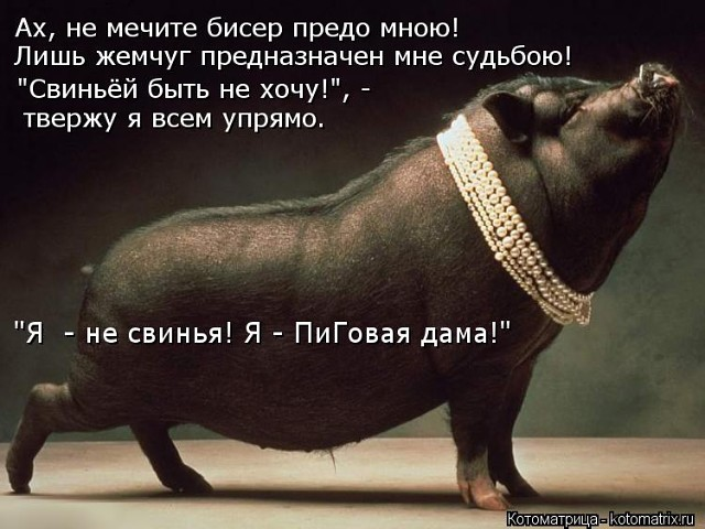 Неожиданные значения 11 слов и выражений в русском языке