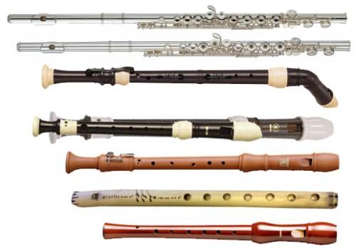 Сбор предоплаты и дозаказы музыкальных инструментов