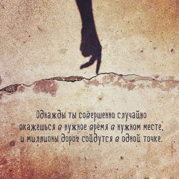 Цитаты от Эльчина Сафарли