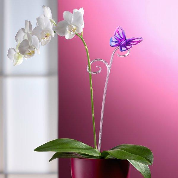 Сбор заказов. Чудесные горшки для орхидей, яркие кашпо. И много других керамических и пластиковых горшков и горшочков.Сбор - 3.