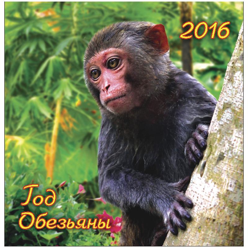 Сбор заказов. Календари настенные, настольные, карманные, а так же ежедневники, планинги на 2016 год