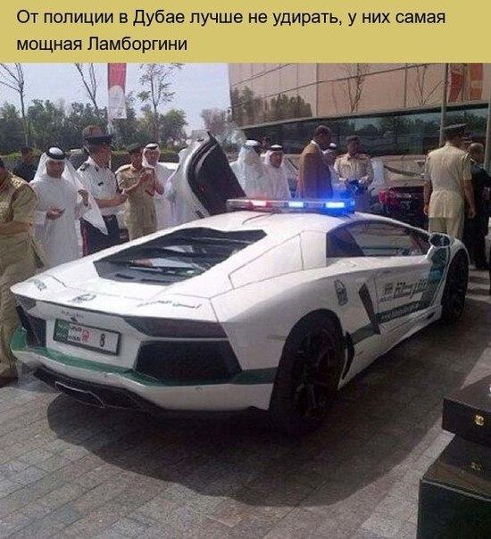 Дубаи самый безумный город в мире