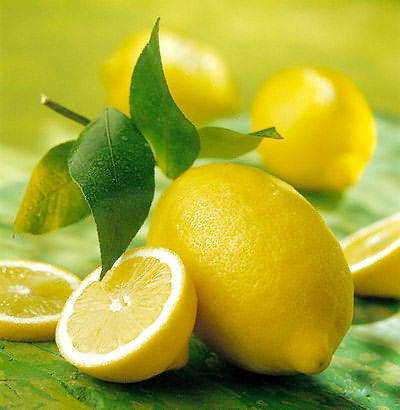 Павловский лимон и мандарин - 5. Лавр, мирт. Растения для осенней посадки.
