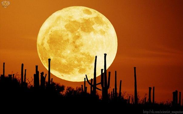Луна является очень сухой, она в миллион раз суше, чем всеми известная пустыня Гоби.