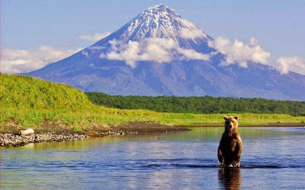 Красивый кадр. Камчатка, Россия