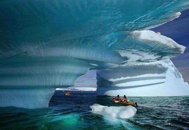 Ледяная бухта, Аляска