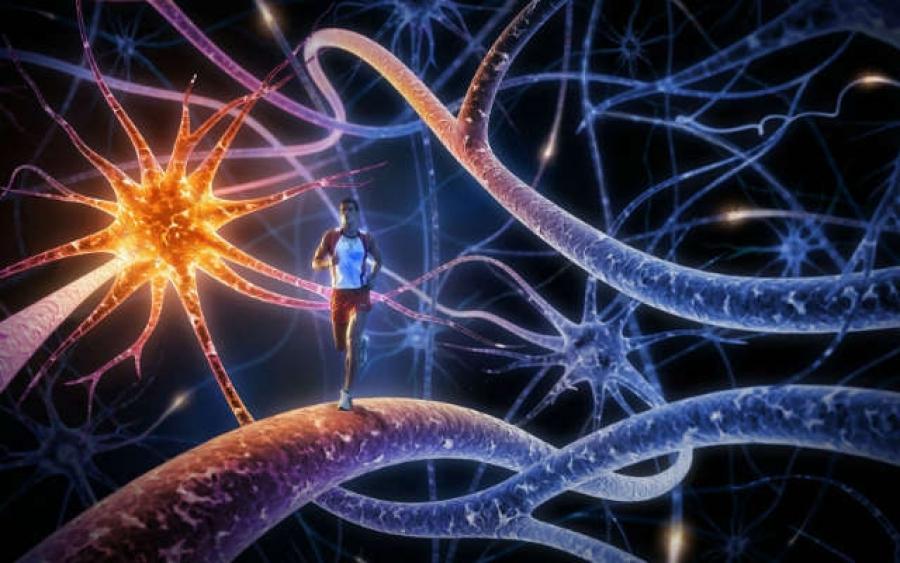 13 явлений, которые ставят науку в тупик