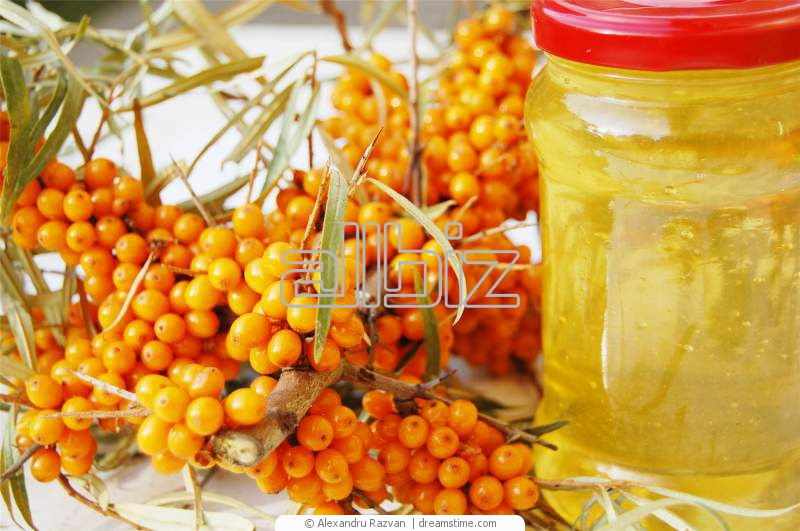 Мед-мед-мед!) А также соты, прополис, перга, пыльца. БАРСУЧИЙ ЖИР и КАСТОРЕУМ. Кедровые орешки и пантовая продукция. ЭКСПРЕСС!