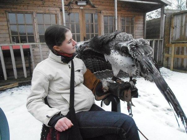 Это Марвин, боевой орел. Он невообразимо крут!