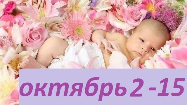 Сбор заказов. Детская одежда Фламинго. Быстрый сбор. Огромнейший выбор. Высокое качество, утонченный дизайн, доступные
