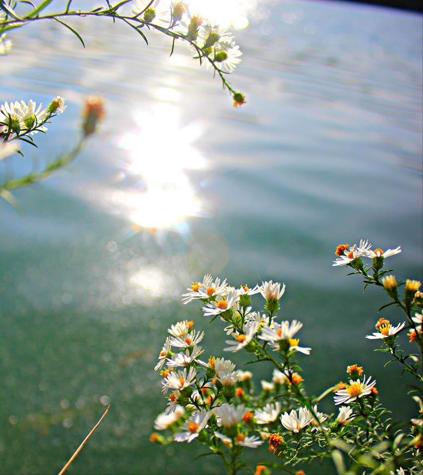 Чем больше в душе солнца - тем ярче жизнь...