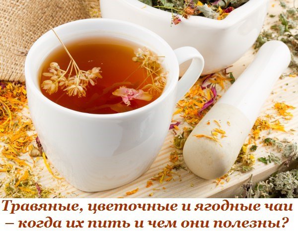 Травяные, цветочные и ягодные чаи когда их пить и чем они полезны