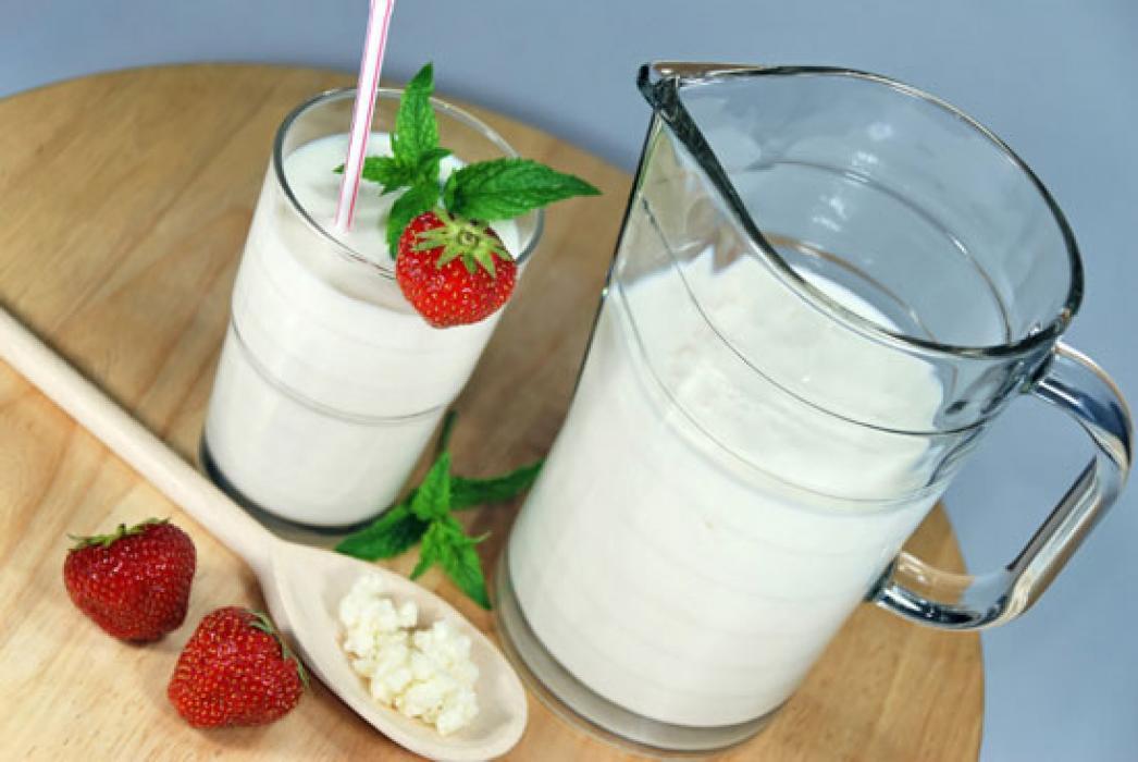 Кефир-бар: закваски для приготовления йогурта, кефира, творога, сыра. BioYo, Genesis, Good Food, Lactina, Lactoferm ECO, Toshev, VIVO, Meito, Каприна, Lacte, БифиДом, закваски для хлеба, Йогуртель. А так же натуральная косметика!