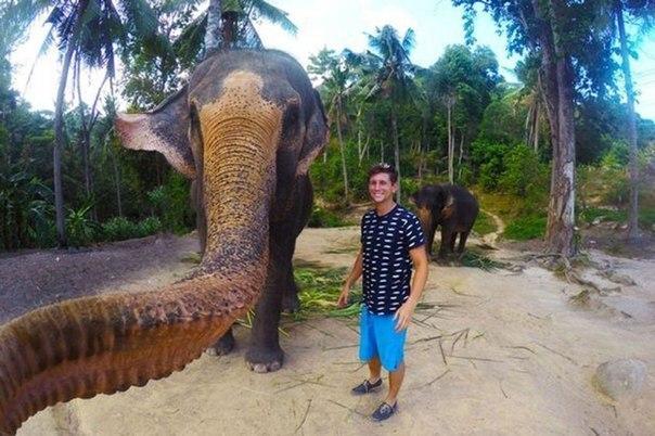 Удивительное селфи слона и туриста
