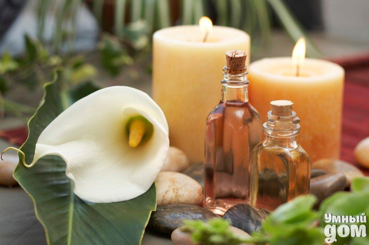 Множество полезных применений эфирного масла гвоздики (эвгенол