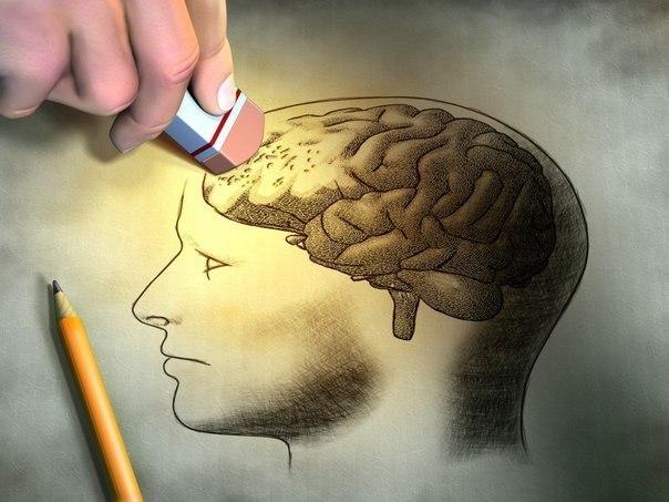 Как укрепить и сохранить память. Аюрведа.