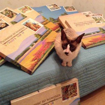 Сбор заказов.Картины по номерам всего 380 рублей, а также алмазная мозаика, триптихи.Новинки.Выкуп 2
