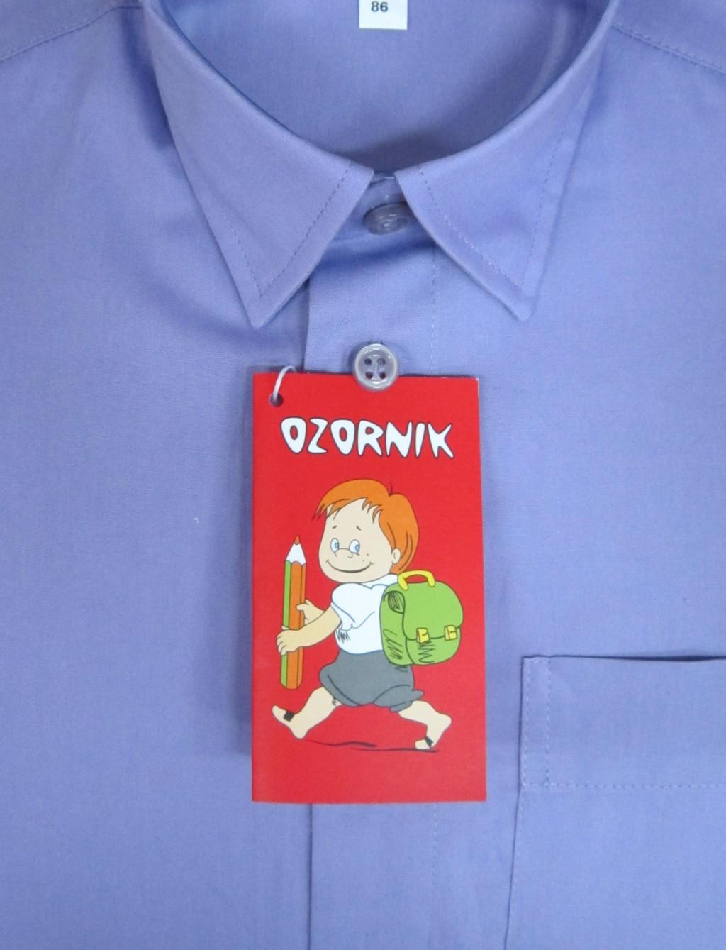 Те самые рубашки Ozornik! Для многих будет просто находка - рубашки на кнопках