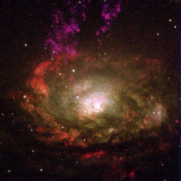 Сейфертовская галактика