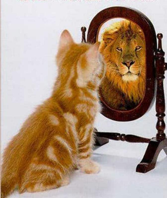 Гордыня является источником пагубных эмоций и мыслей