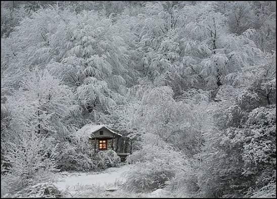 Хотелось бы чего-то необычного этой зимой. Например, снега...
