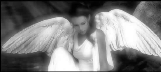 Крылья становятся сильнее и крепче только от пережитых испытаний...