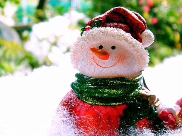 Поздравляю всех подписчиков с Новым Годом и Рождеством! Здоровья, счастья и добра!