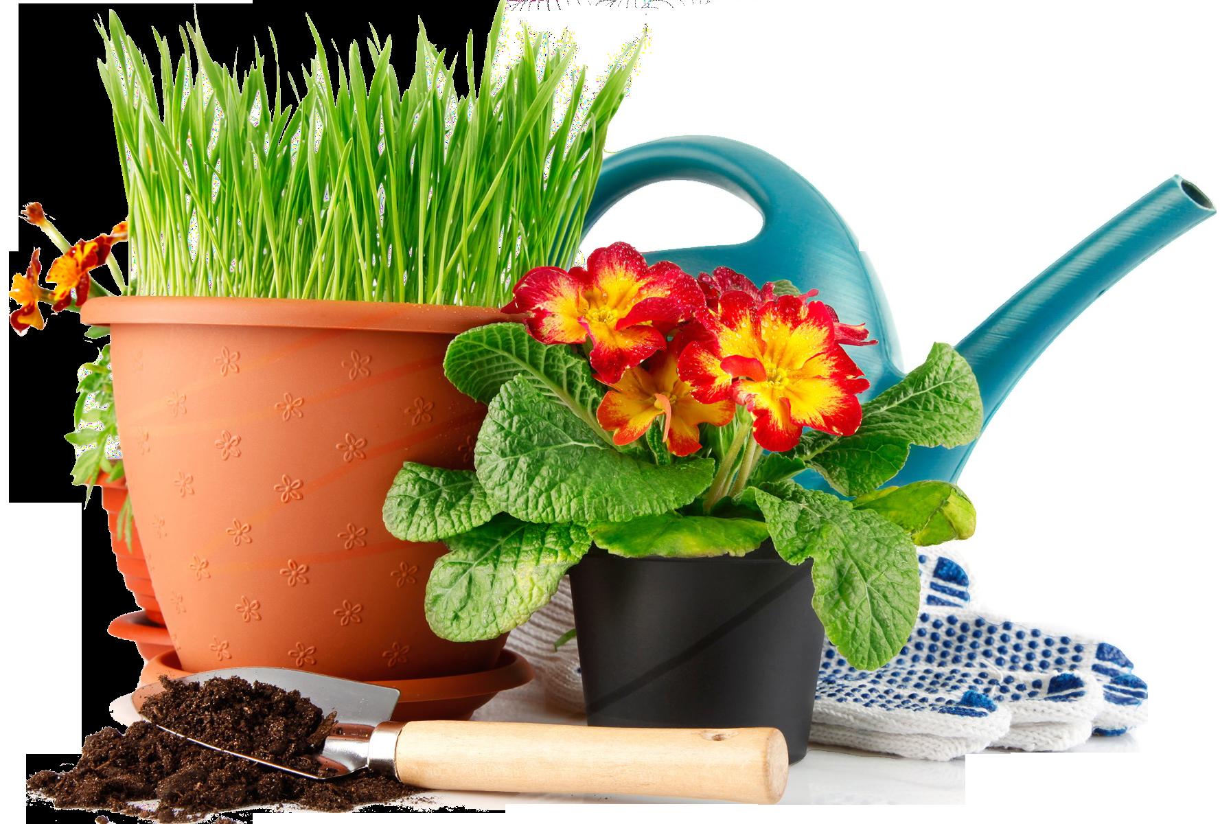 Сбор заказов. Всё для сада-огорода. Удобрения,ср-ва защиты, садовый декор, инструмент и разные садовые нужности