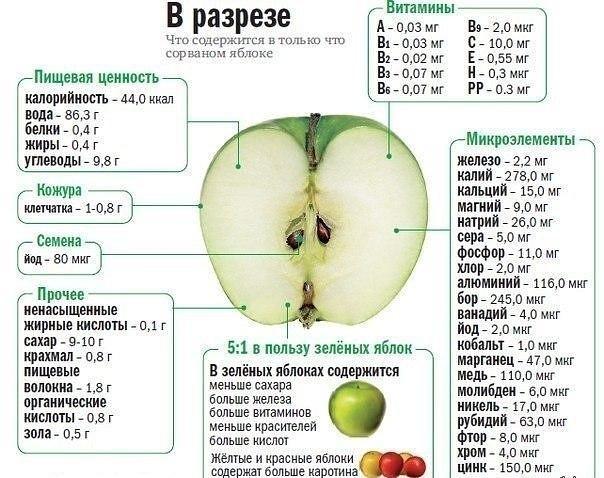 Польза яблока