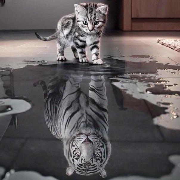 Главное, кем видишь себя ты!!! :-)