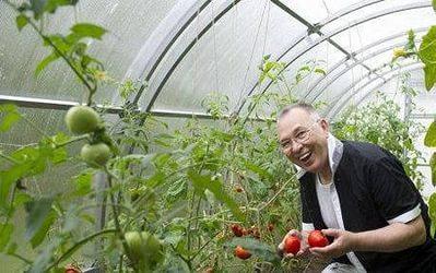 Сбор заказов. Богатый урожай на зависть всем! Fertika удобрения для сада и огорода нового поколения