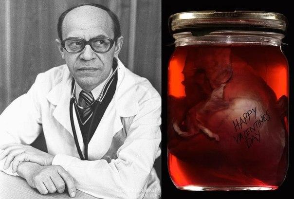 Почему врач хранил в своем кабинете сердце пациентки?