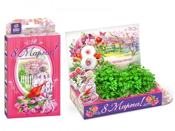 Happyplant - Живые открытки, сувениры, детские подарки - вырасти меня - красиво, удобно и оригинально