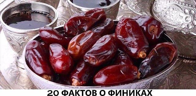 20 ФАКТОВ О ФИНИКАХ