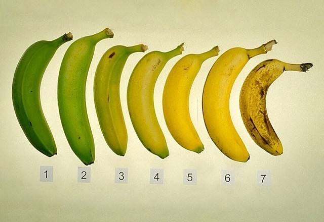 ЕСТЬ ИЛИ НЕ ЕСТЬ: какой секрет хранят почерневшие бананы