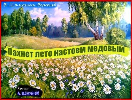 Пахнет лето настоем медовым...