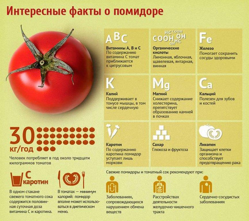 Интересные факты о томате