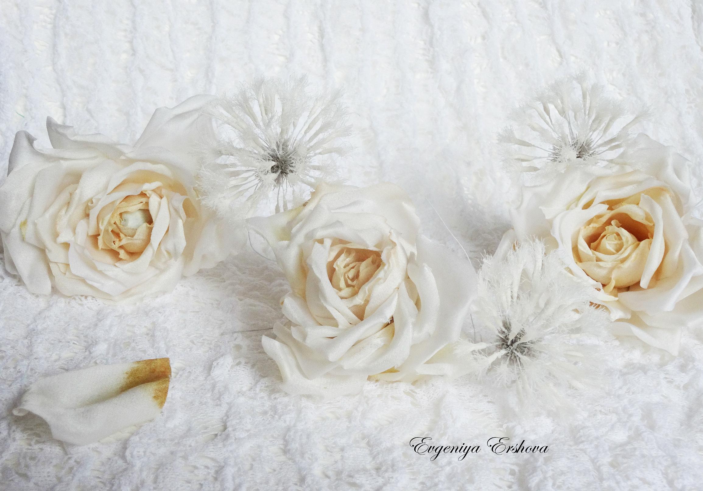 Розы Воздушная карамель, тандем с одуванчиками