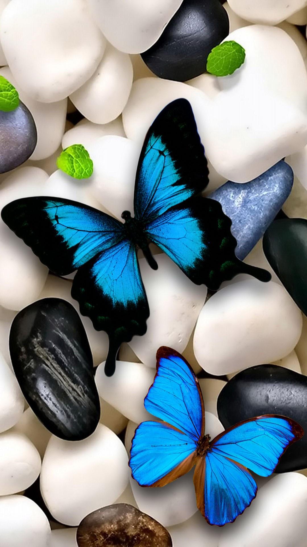 Сбор заказов. Алмазная мозайка - самый современный вид рукоделия, сможет каждый-5. Самые низкие цены на картины по своим фото