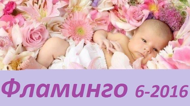 Сбор заказов. Детская одежда Фламинго-6-2016. Огромнейший выбор ясельки без рядов. Высокое качество, утонченный дизайн
