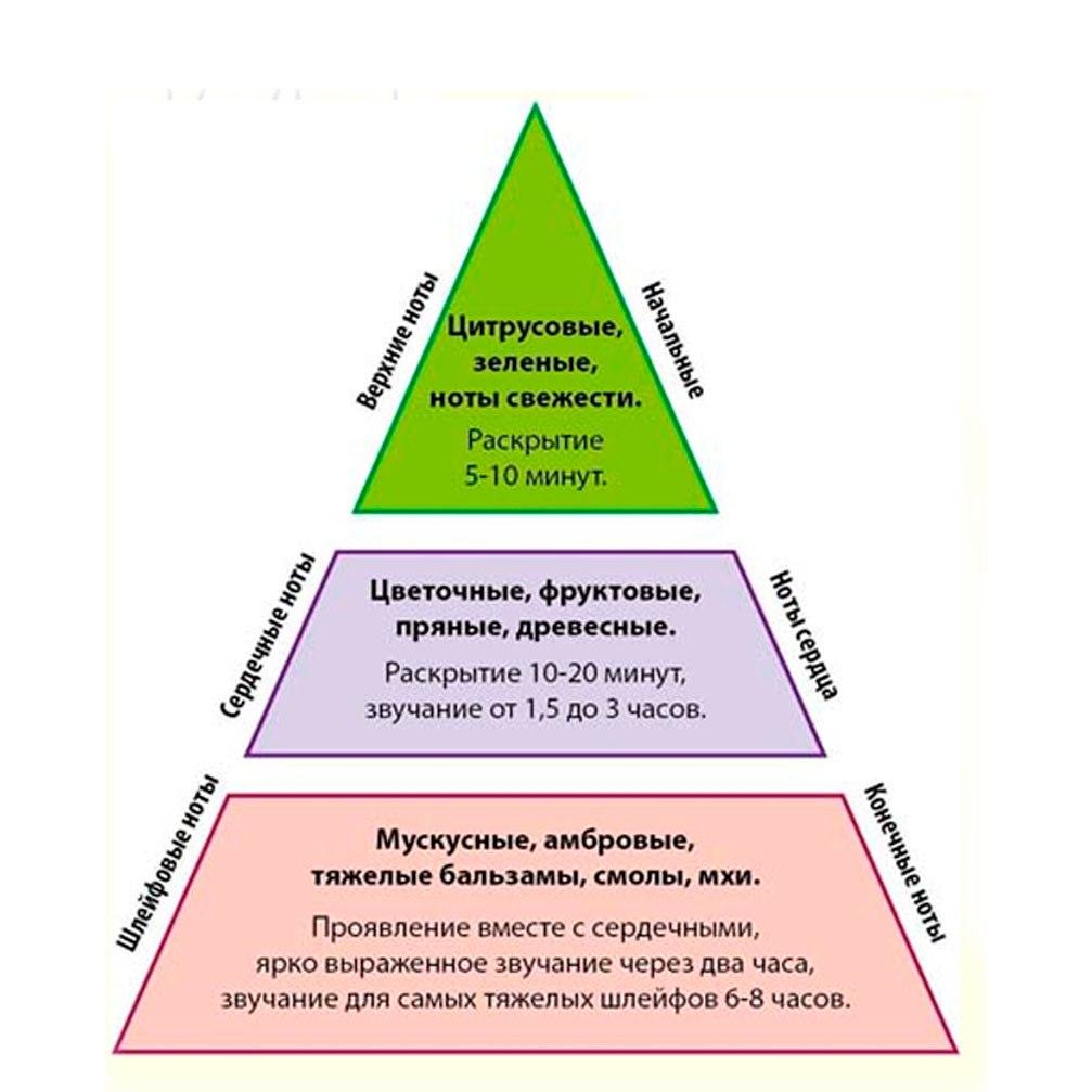 Структура аромата делится на 3 ноты или 3 ступени пирамиды