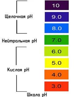Рекомендуемая кислотность почвы для комнатных растений
