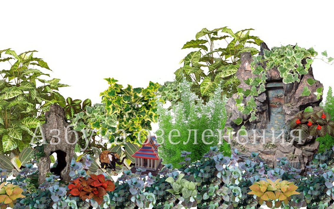 Приглашаю к прочтению моей статьи: 6 простых правил выращивания комнатных растений.